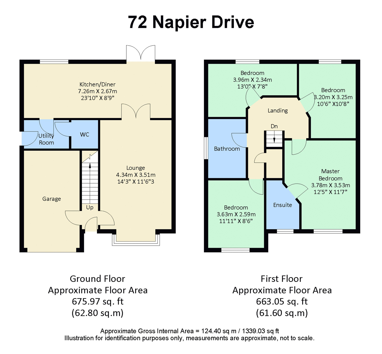 72 Napier Drive