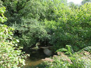 Clifford Bridge Park Drewsteignton