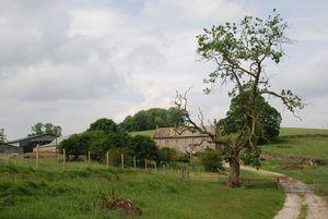 Thrimby Hall Farm Thrimby