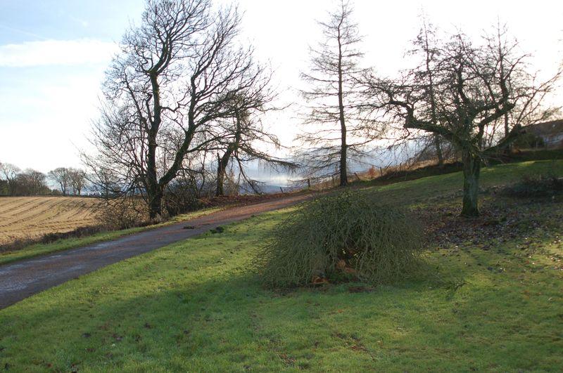 Stanmore Farm Lanark