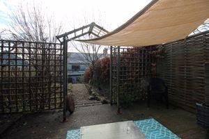 View down back garden