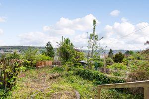 Garden With City Vistas