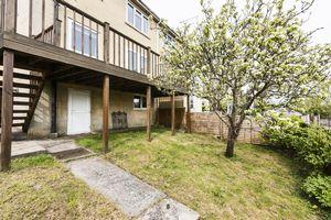 Rear Garden / Undercroft