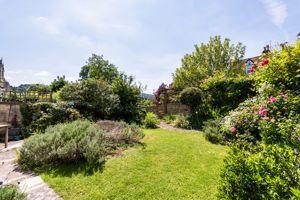 Mature Sunny Garden