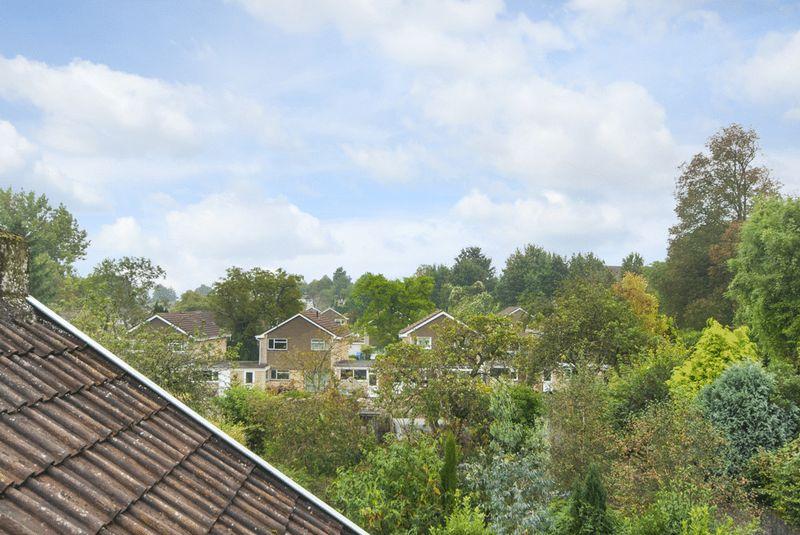 Roof & Tree Top Views