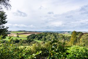 View from Garden Perimeter