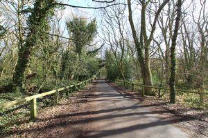 Shipley Wood