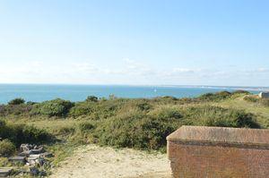Hurst Point View