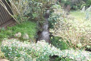 Brook at Bottom of Rear Garden