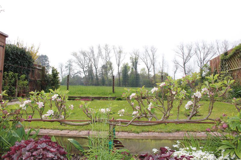 Fynamore Gardens