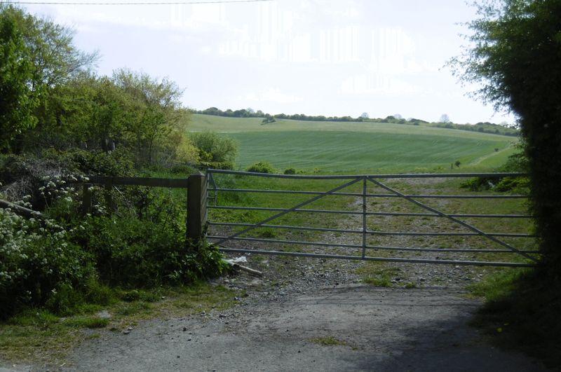 Heddington Views