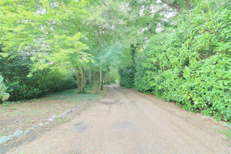 Danemore Lane