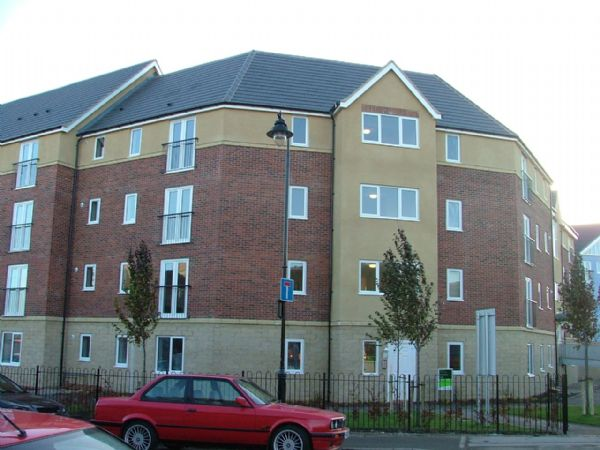 50 Chillingham Road