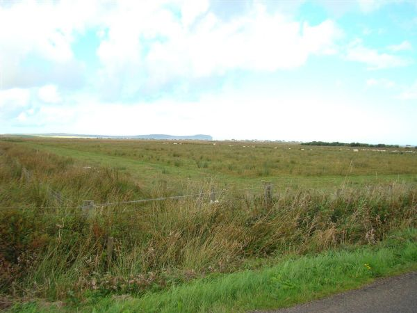 Harrow West Mey