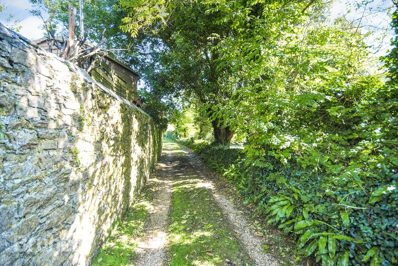 Forder Hill Cawsand