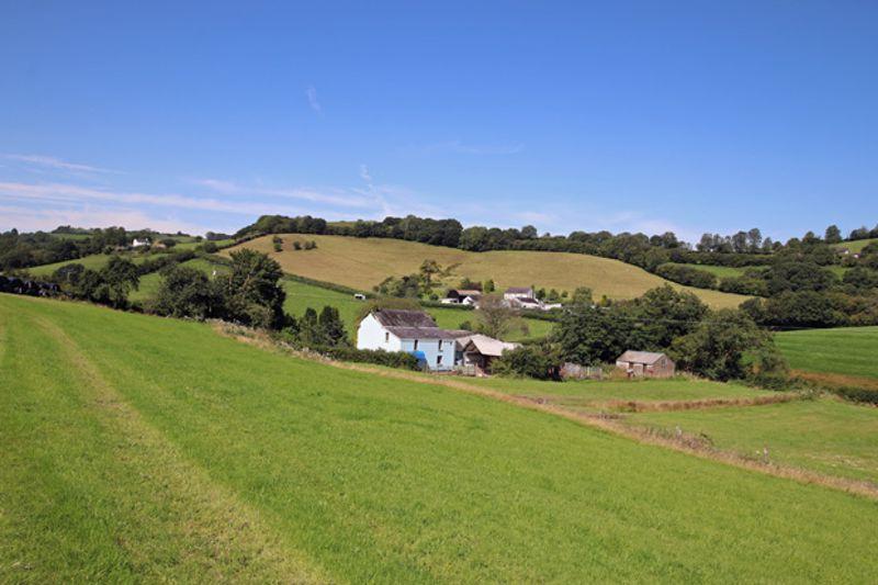 Whitemill