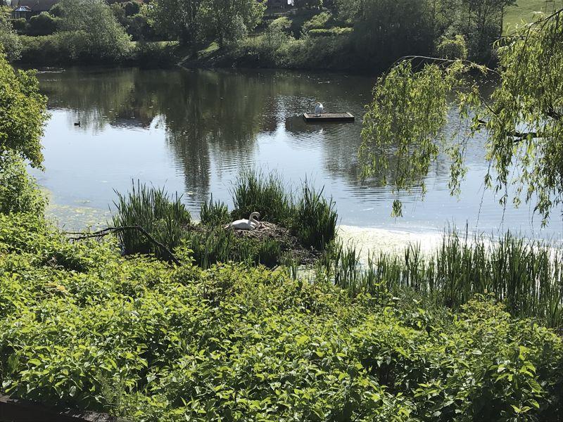 Lakeside Court Lakeside, Amblecote