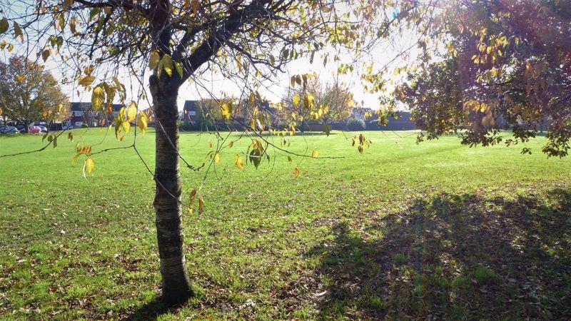 Colehill Crescent Muscliff