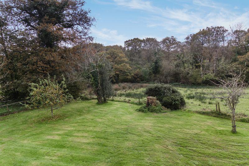 Seldon Farm Monkokehampton