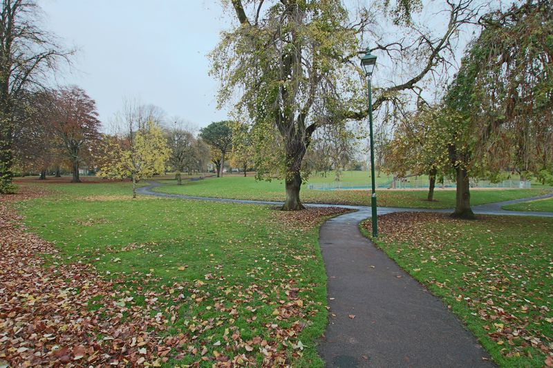 Flat View Of Baxter Park