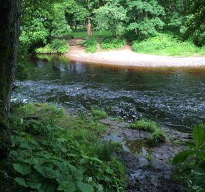 Lodgehill Park
