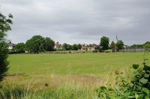 Hawthorn Grove