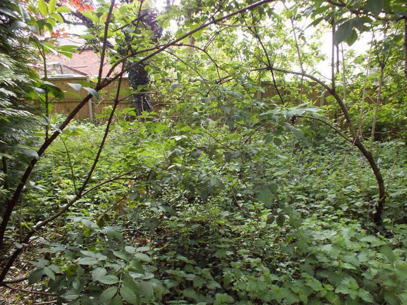Bemersley Road Ball Green