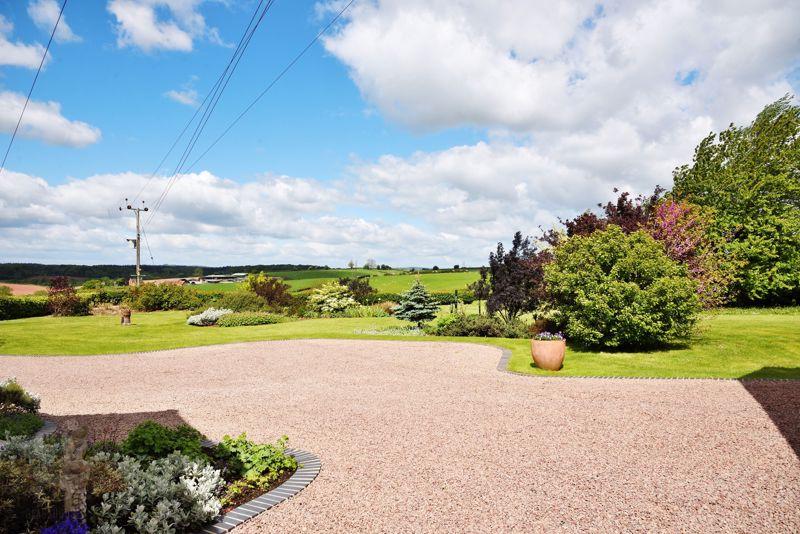 Driveway & Gardens