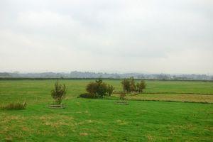 Sandside Cockerham