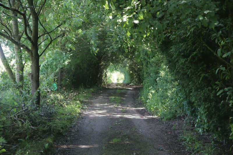 Cowfold Road