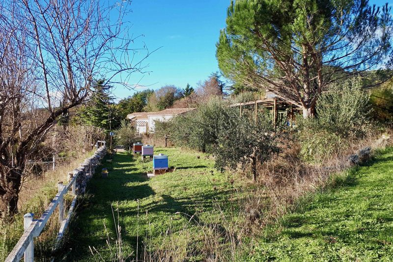 Upper garden 2