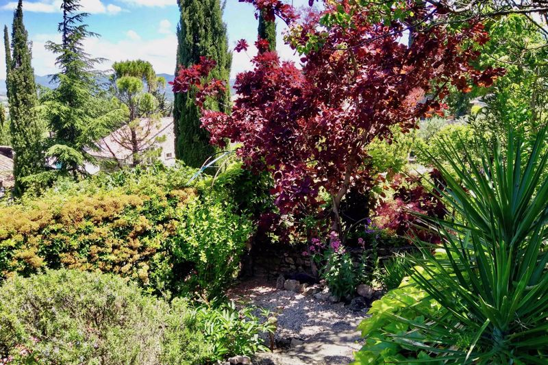 The garden and view