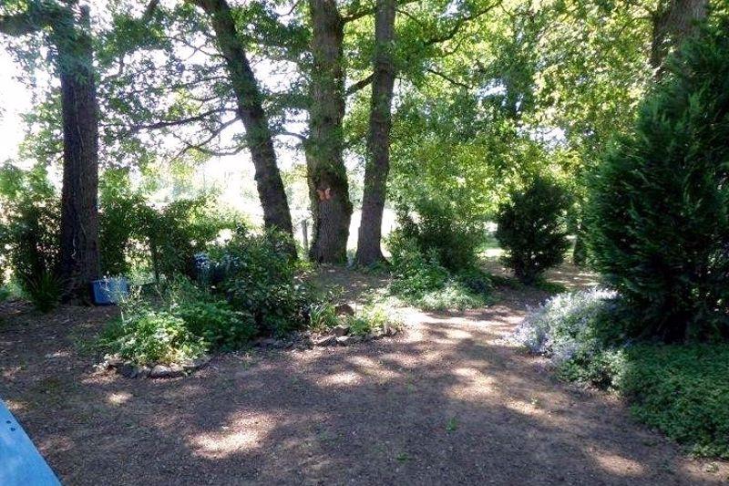A shady area in the garden