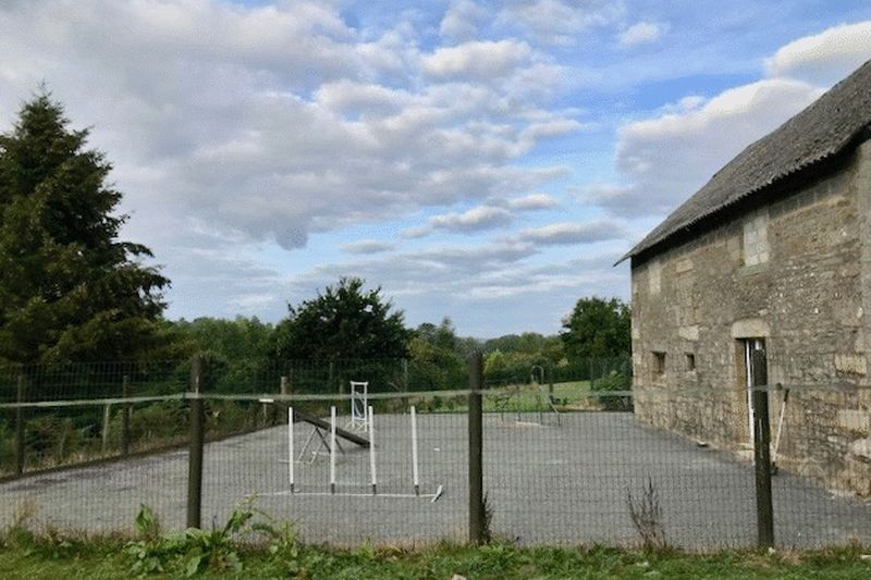 Agility area/front of kennels