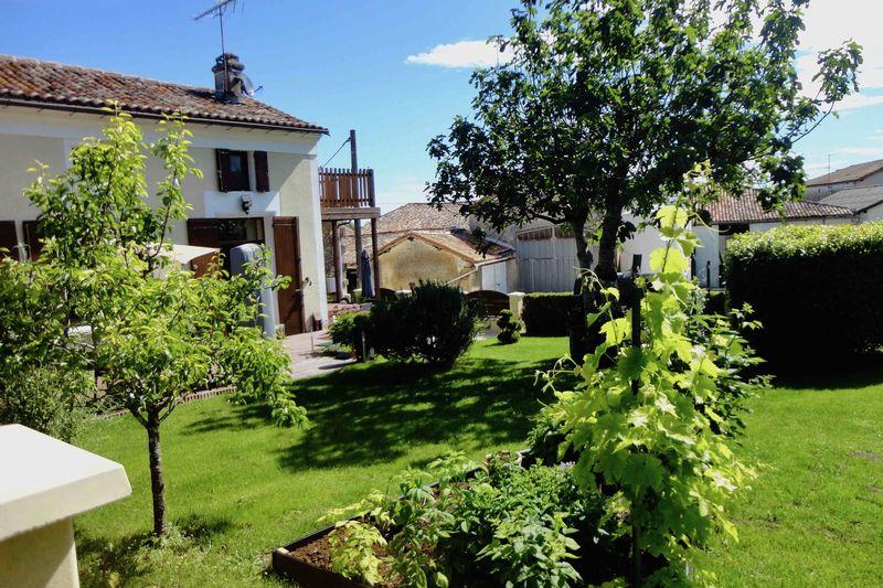 The garden facing the house