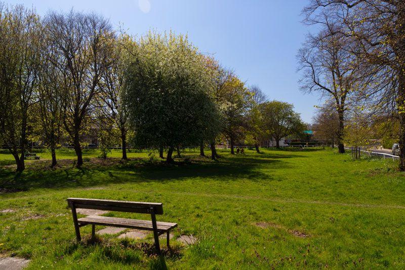 Clifton Green