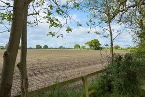 Hagg Lane South Duffield