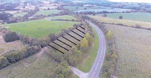 Naas Lane