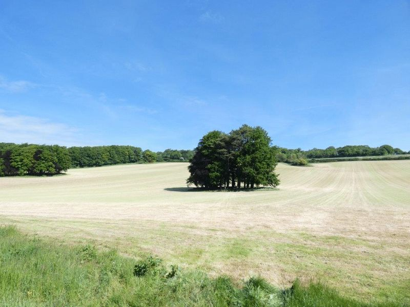 Swarling Hill Road Petham