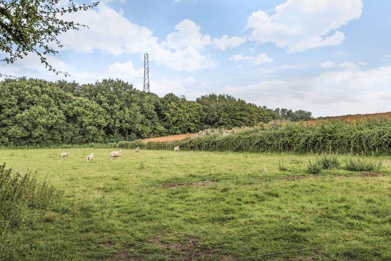 Lymbridge Green Stowting