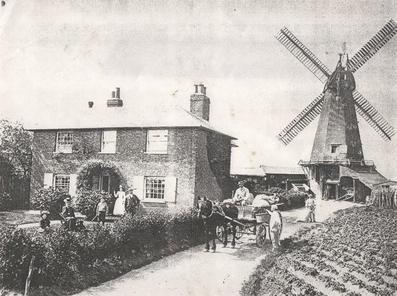Mill Road Staple