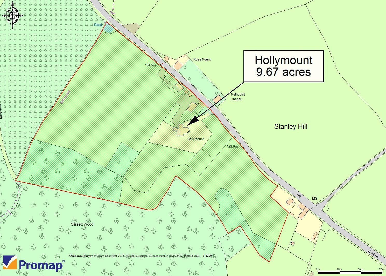 Hollymount Siteplan