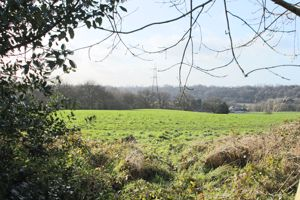 Marlowe Walks Bredbury