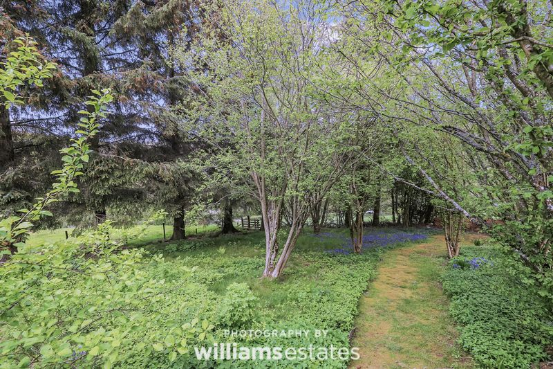 Wild Garden Area