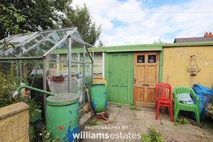 Greenhouse & Outbuilding