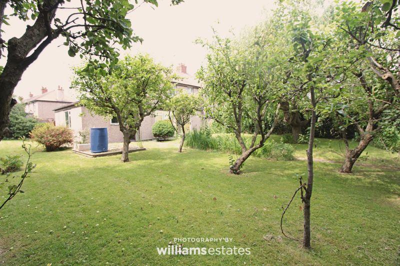 rear garden & fruit trees