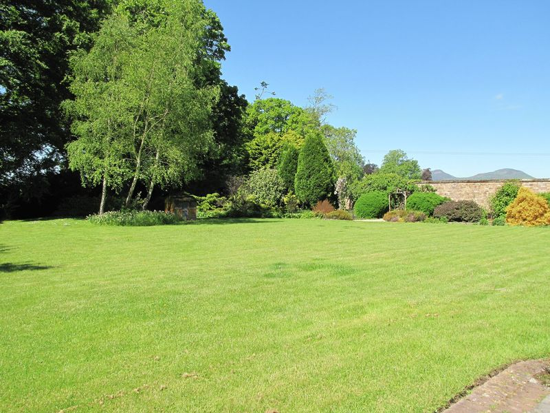 Garden & views of the Eildons