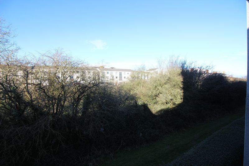 Guillemot Road