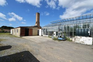 Keithley Vinery Site, Rue Sauvage