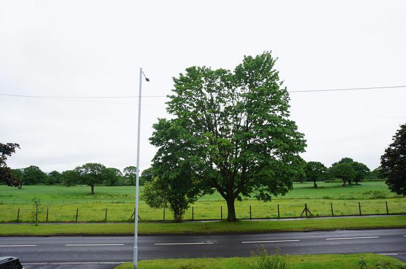 Jacksons Lane Hazel Grove